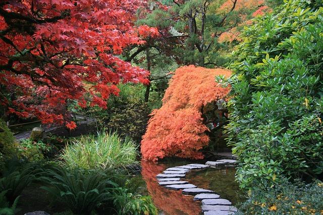 japonská zahrada a cesta.jpg